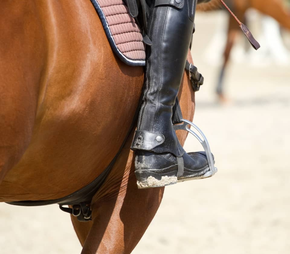 guetres spats gaiters chaps equestrian cavalier equitation horse cheval belle lurette et cie france